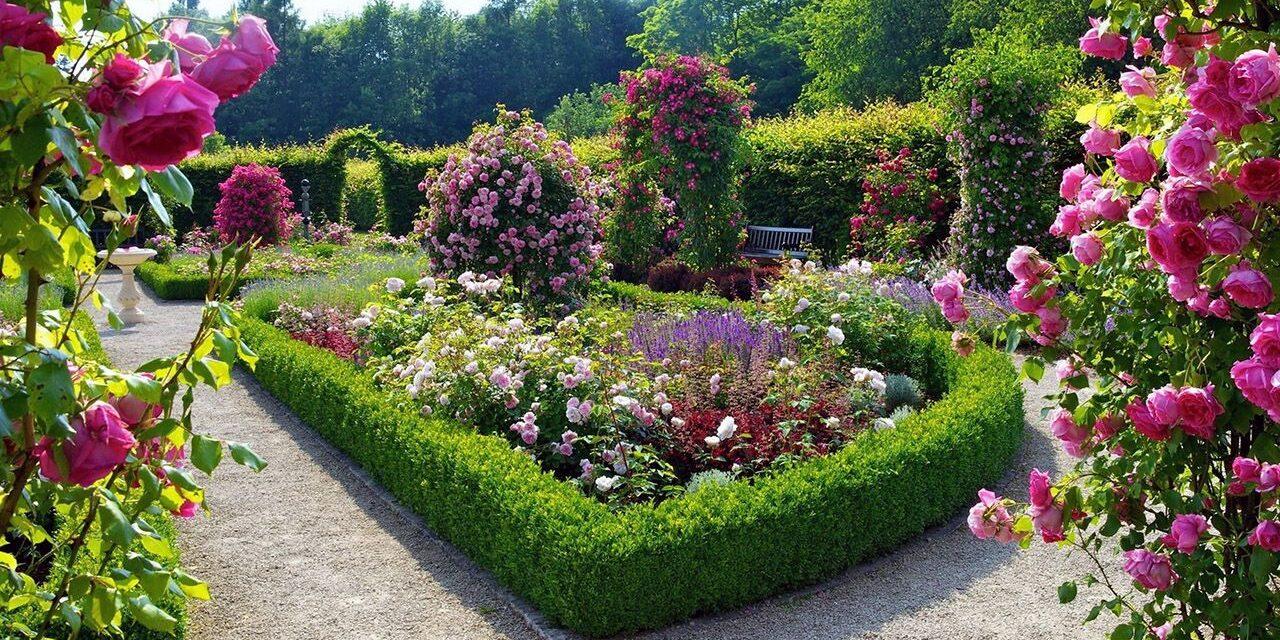 ТОп-10 квітучих кущів для ландшату саду